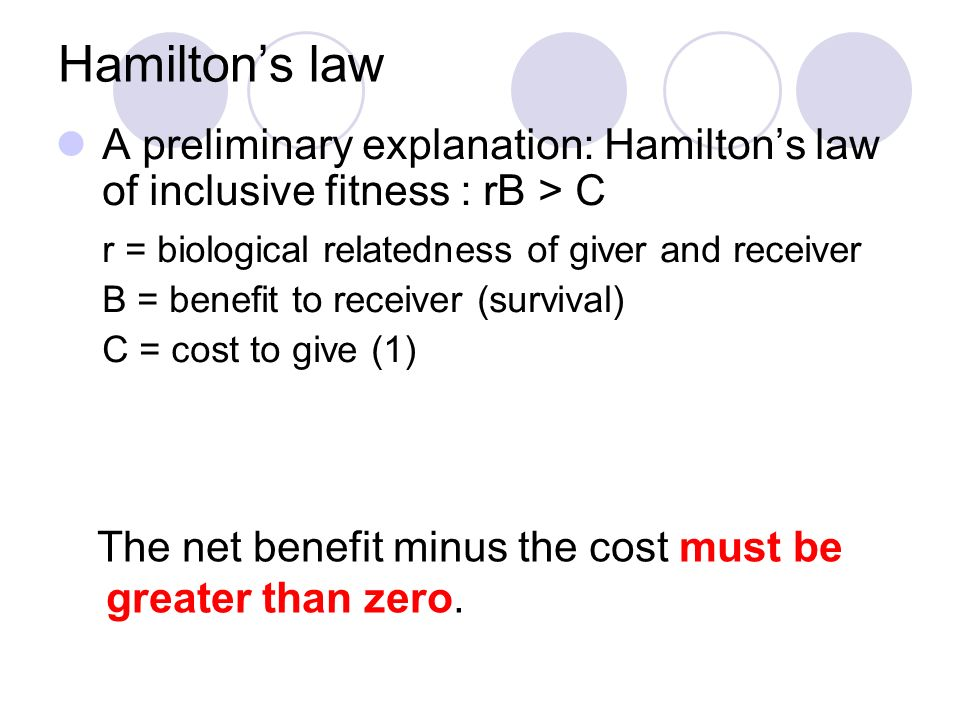Hamilton's law A preliminary explanation: Hamilton's law of inclusive fitness : rB > C. r = biological relatedness of giver and receiver.