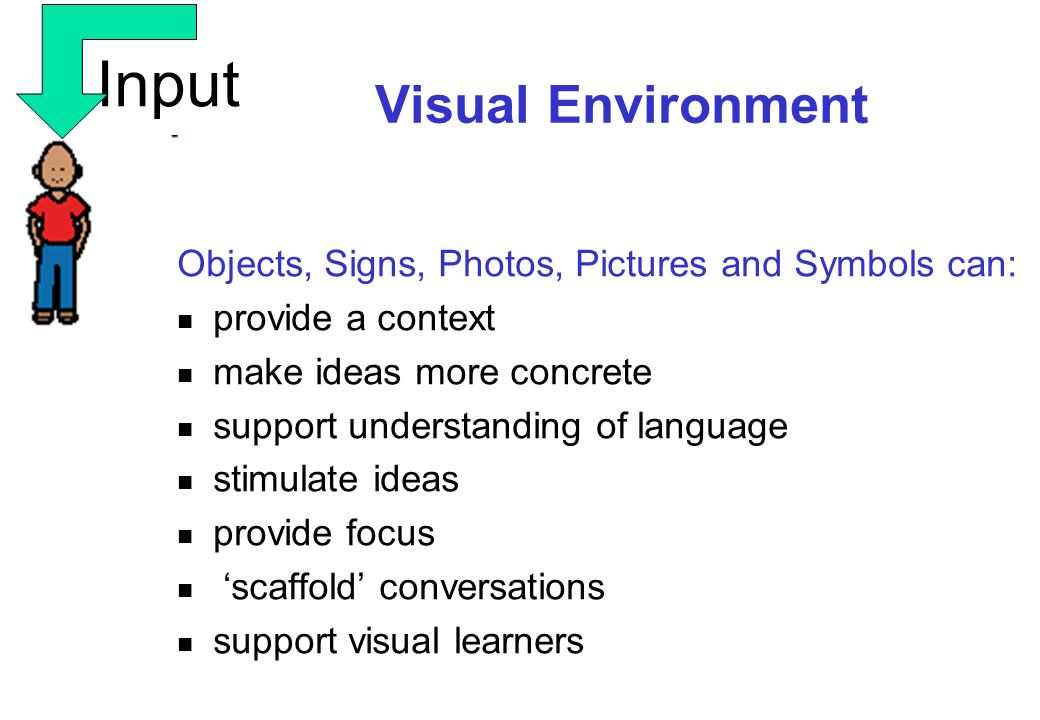Input Visual Environment