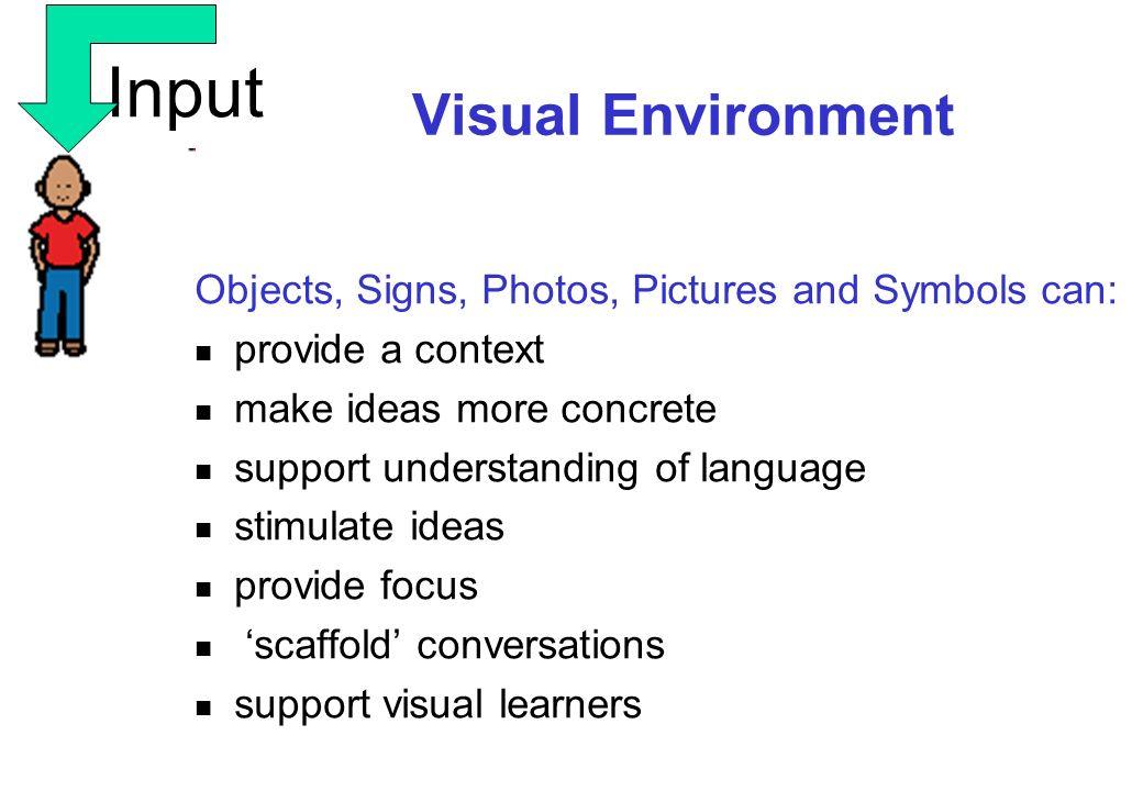 Input Visual Environment