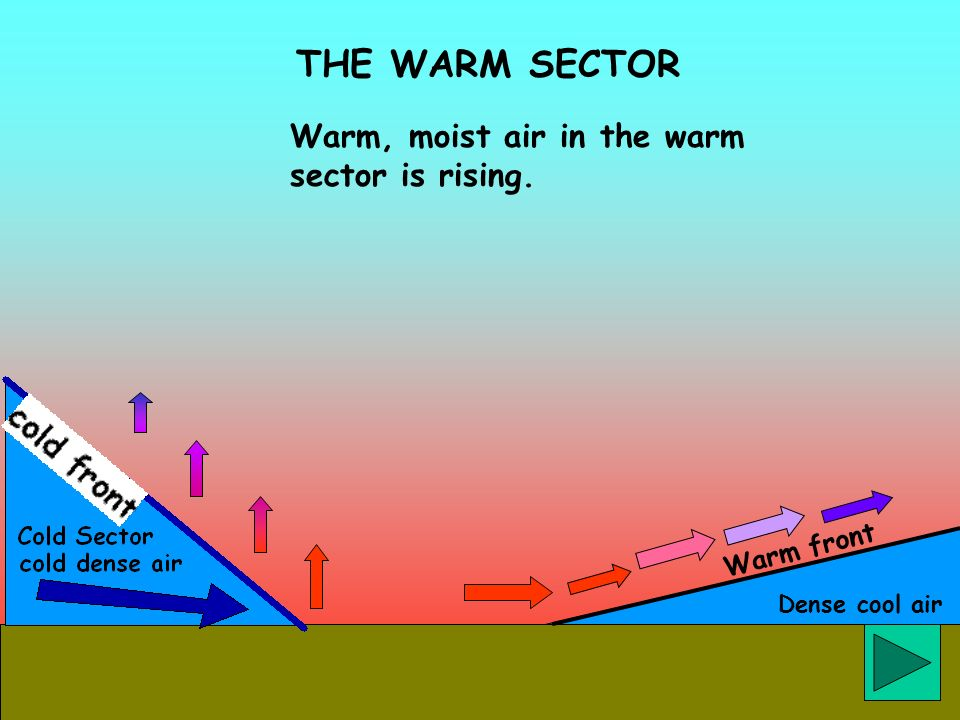 THE WARM SECTOR Warm, moist air in the warm sector is rising.