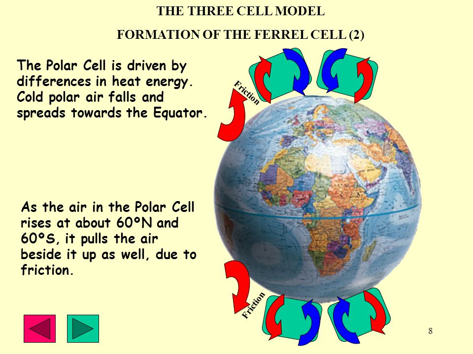 FORMATION OF THE FERREL CELL (2)