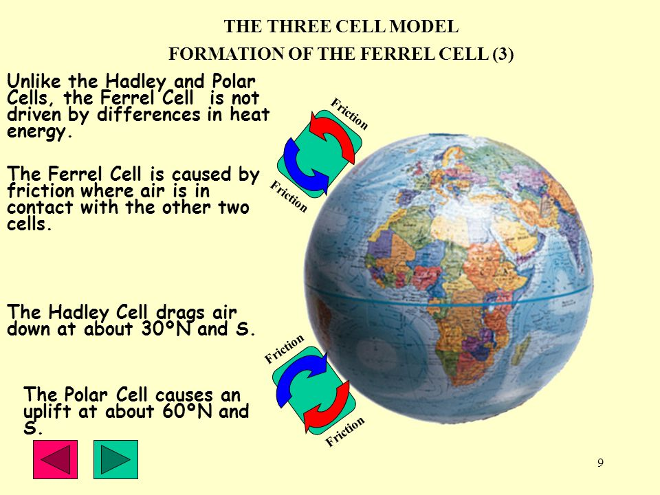 FORMATION OF THE FERREL CELL (3)