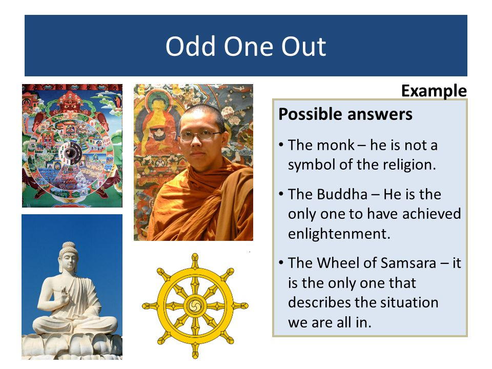 Odd One Out Example Possible answers