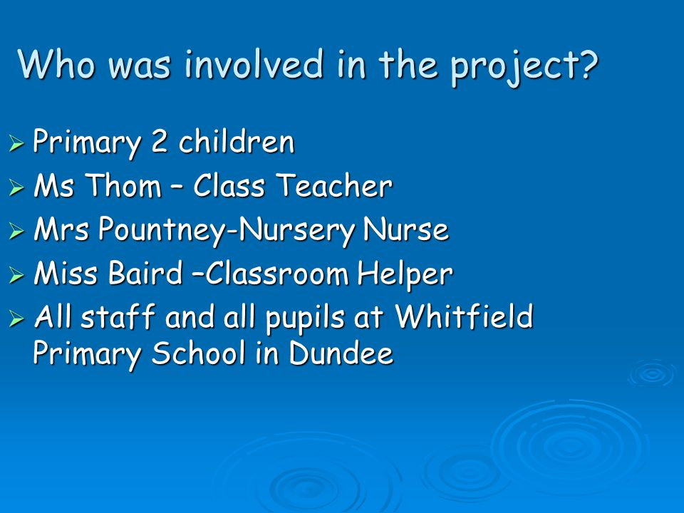Who was involved in the project