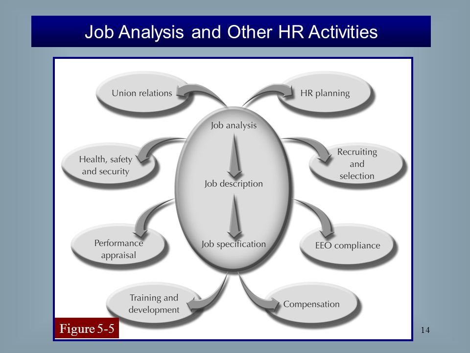 job analysis and other terms Job analysis and various terms job analysis is a systematic exploration, study and recording the responsibilities, duties, skills, accountabilities, work environment and ability requirements of a specific job.