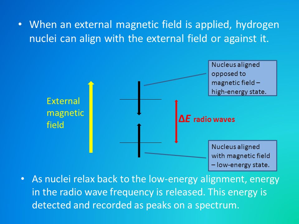When an external magnetic field is applied, hydrogen nuclei can align with the external field or against it.