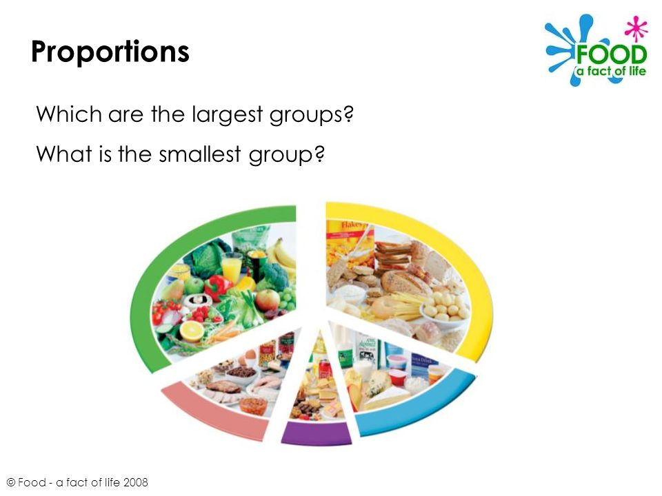 Proportions Which are the largest groups What is the smallest group
