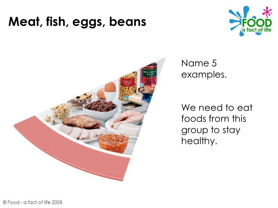 Meat, fish, eggs, beans Name 5 examples.