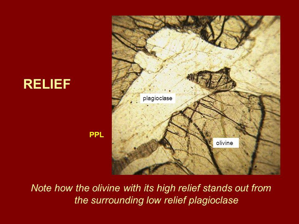 RELIEF plagioclase. PPL. olivine.