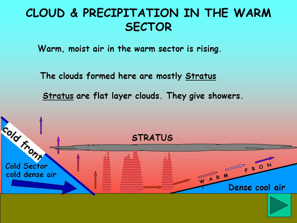 CLOUD & PRECIPITATION IN THE WARM SECTOR