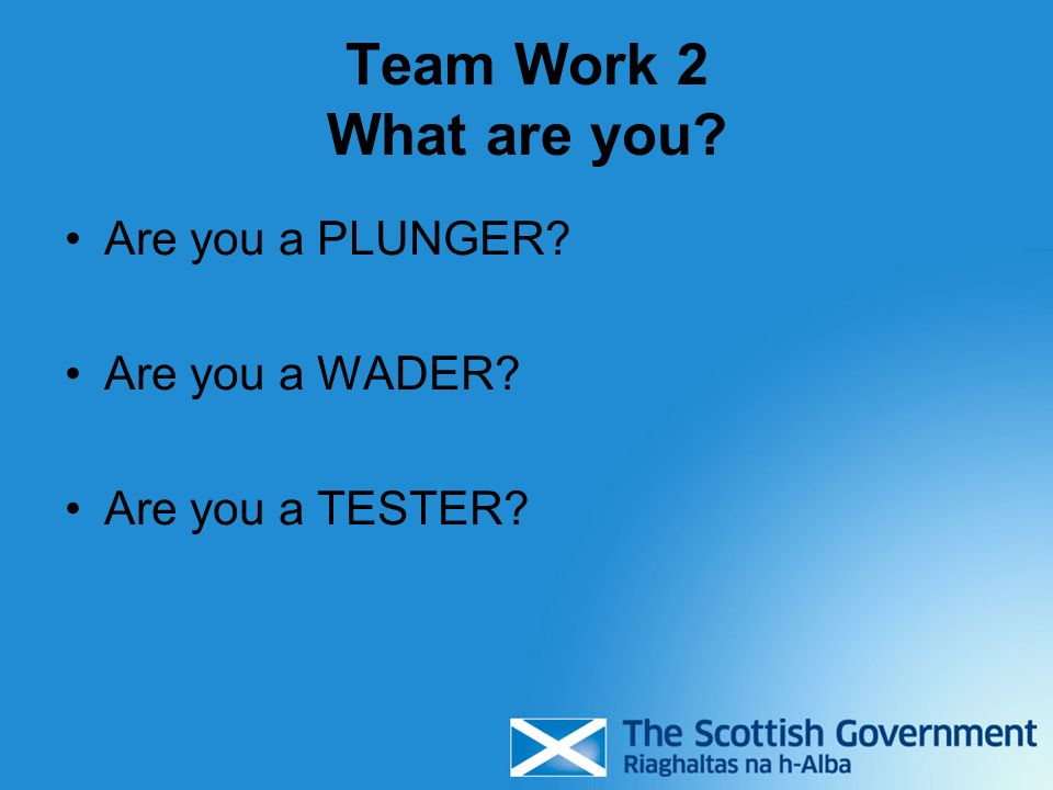 Team Work 2 What are you Are you a PLUNGER Are you a WADER