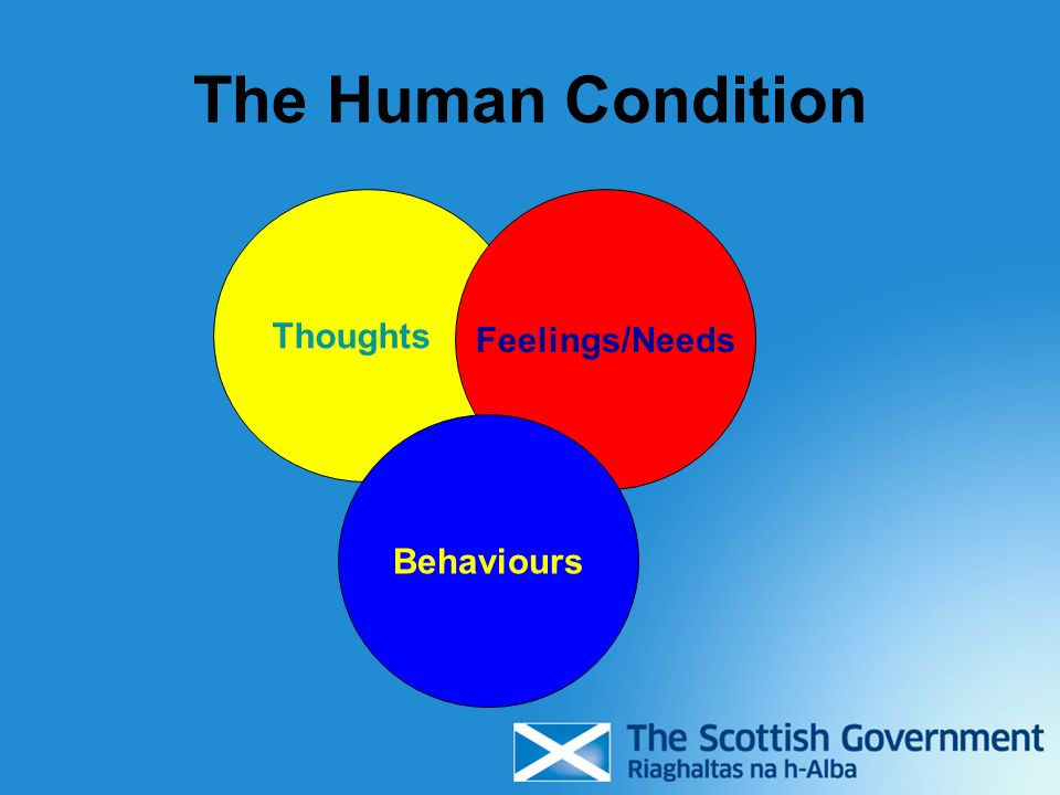 The Human Condition Thoughts Feelings/Needs Behaviours