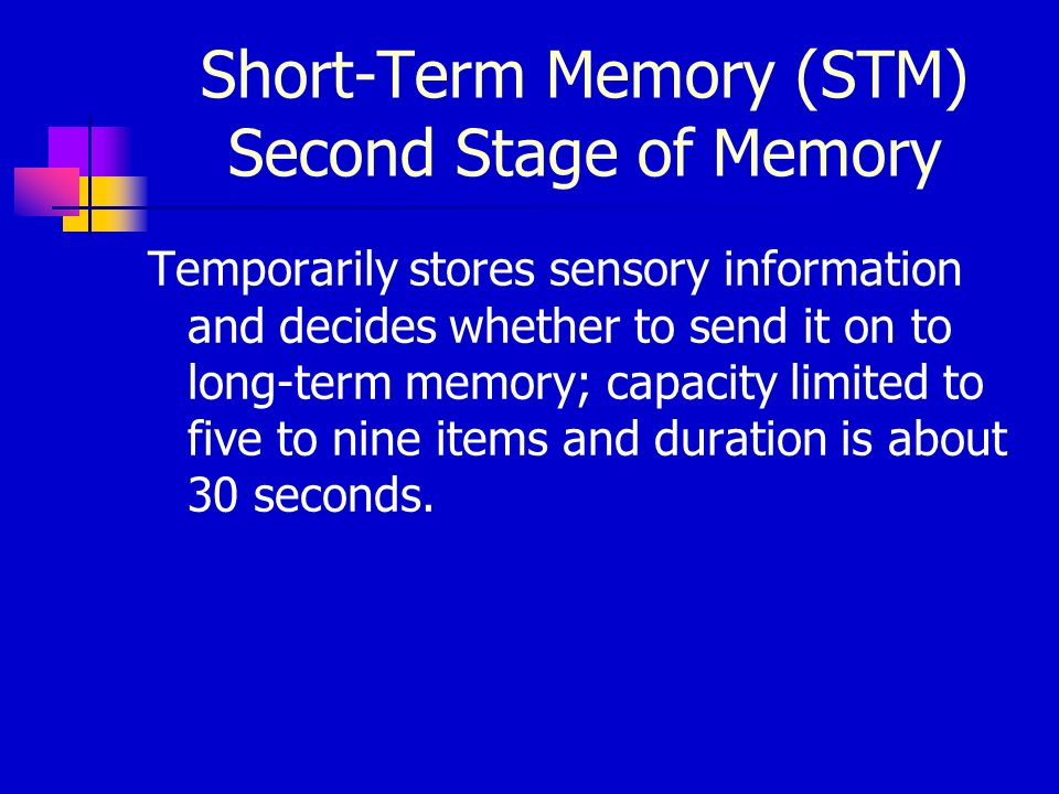 Chapter 7 Memory  Ppt Video Online Download. Getting Pre Approved For Mortgage. International Trade In China. Credit Card Terminal Leasing Companies. Video Services Washington Dc Cpa Exam Ohio. Window Repair Austin Tx Tulsa County Election. Ncqa Health Plan Rankings Rfid Reader And Tag. Jenkins Environment Variables. French Word For Cookie Georgetown Mba Ranking