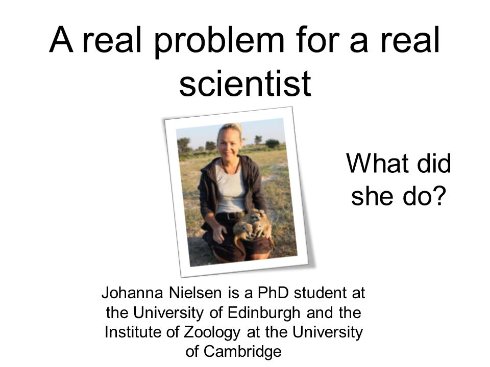 A real problem for a real scientist