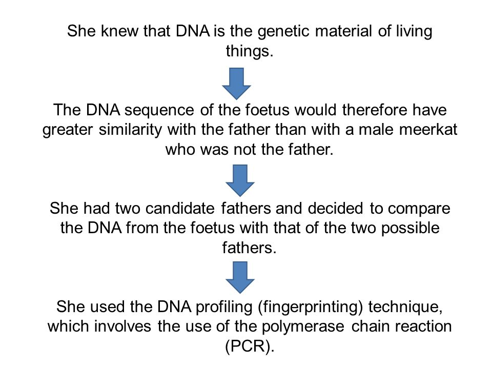 She knew that DNA is the genetic material of living things.