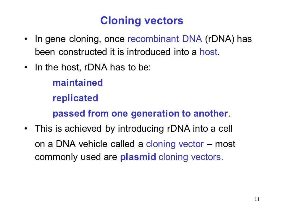 Cloning vectorsIn gene cloning, once recombinant DNA (rDNA) has been constructed it is introduced into a host.