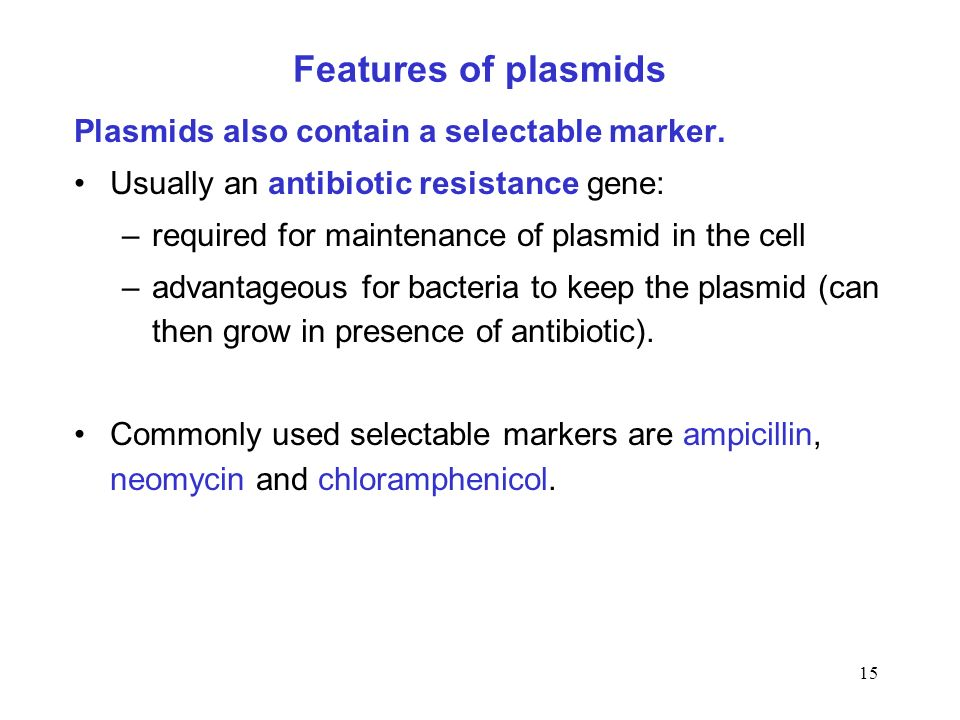 Features of plasmids Plasmids also contain a selectable marker.