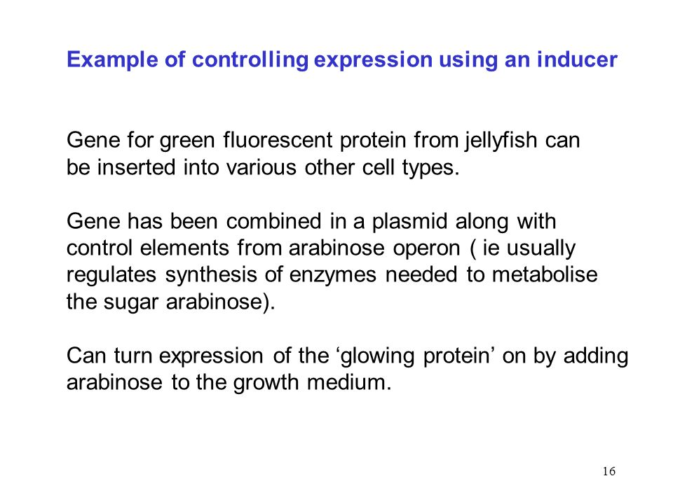 Example of controlling expression using an inducer