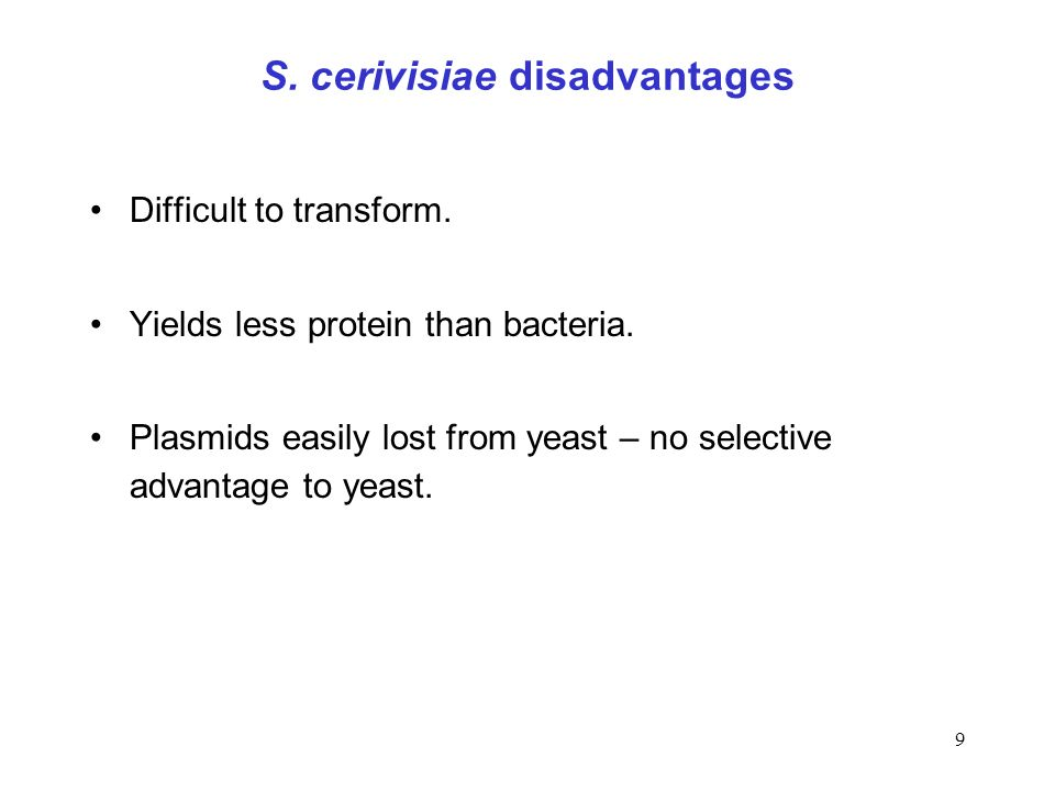 S. cerivisiae disadvantages
