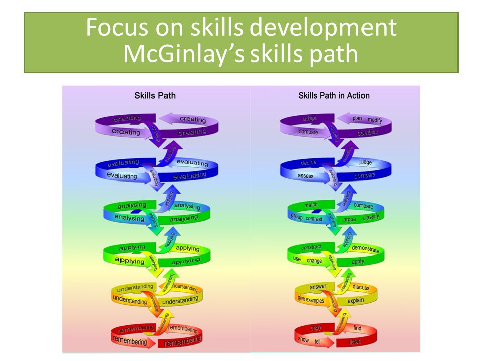 Focus on skills development McGinlay's skills path