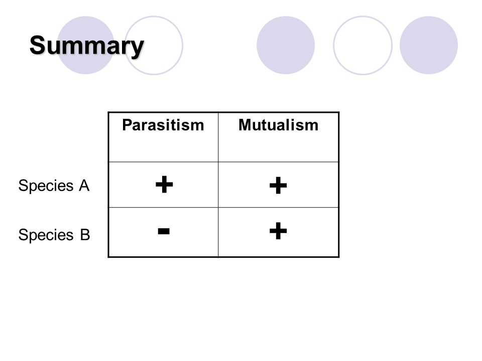 Summary Parasitism Mutualism + + Species A - + Species B