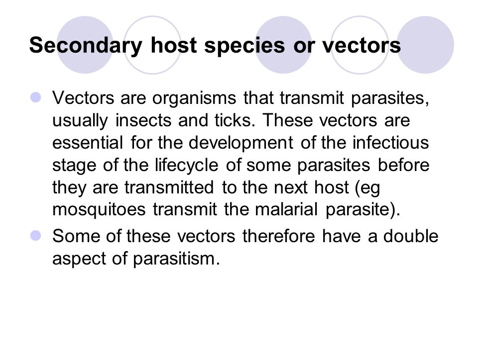 Secondary host species or vectors