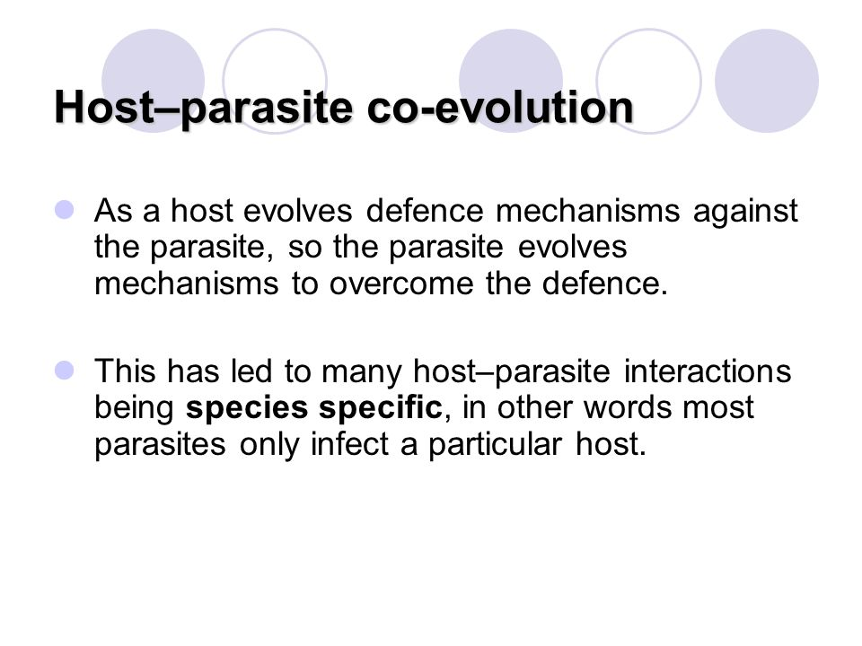 Host–parasite co-evolution