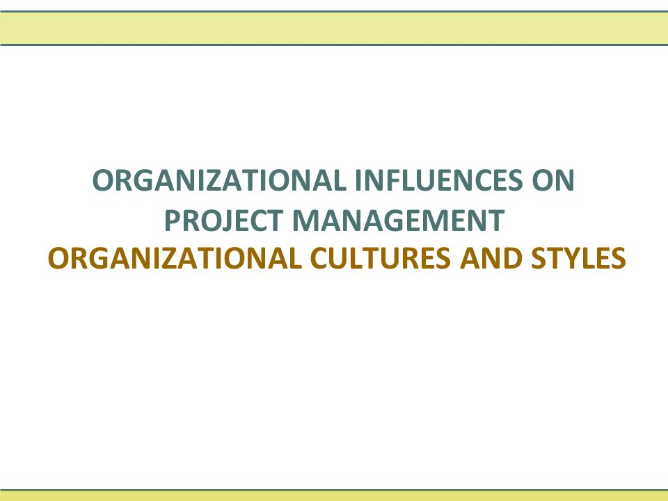Organizational cultures and styles