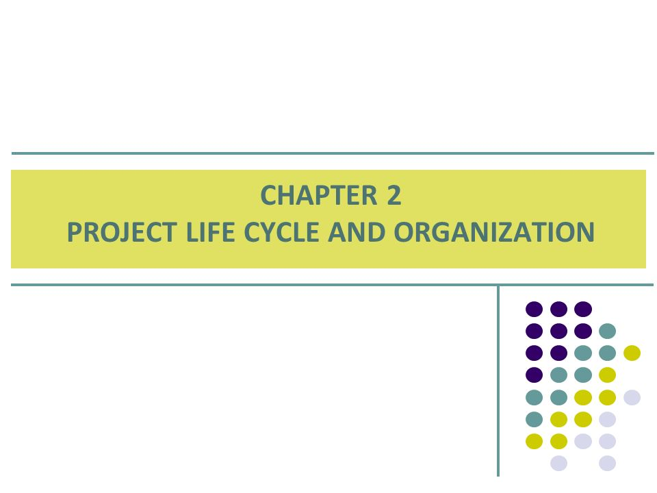 CHAPTER 2 PROJECT LIFE CYCLE AND ORGANIZATION