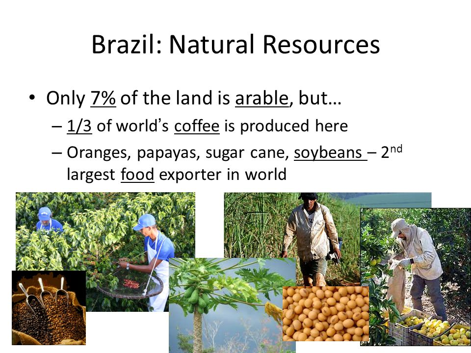 LOCATION LOCATION LOCATION Ppt Download - Natural resources of brazil