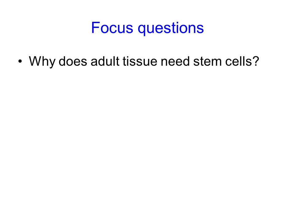 Focus questions Why does adult tissue need stem cells 9