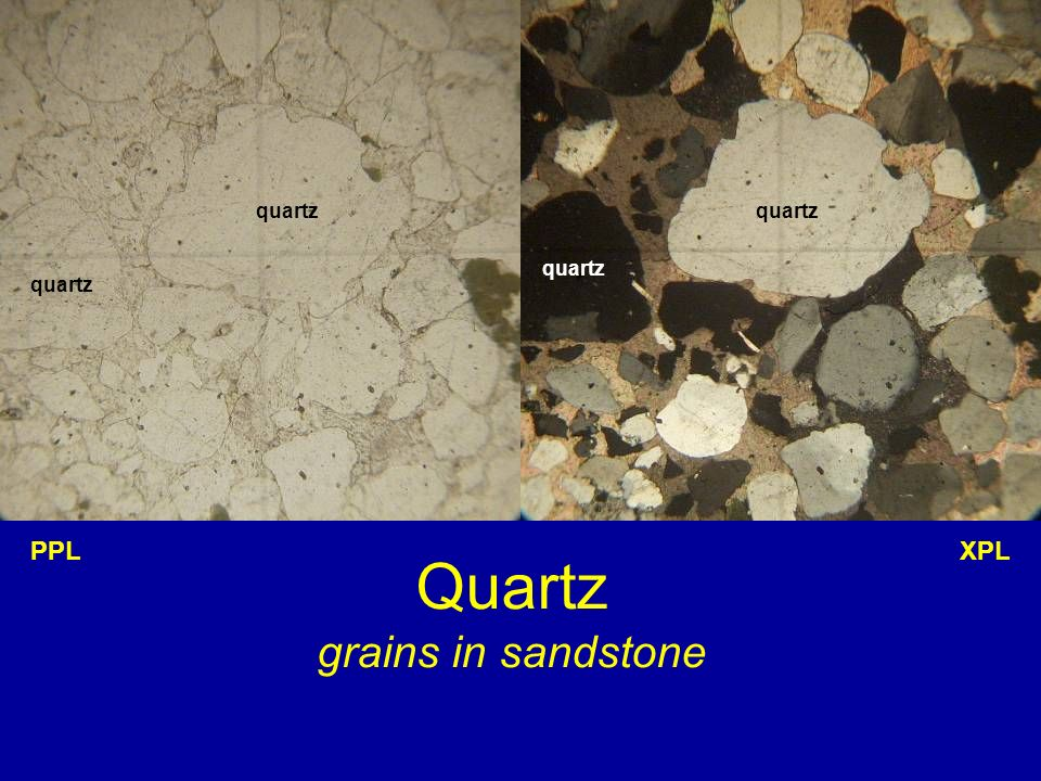 Quartz grains in sandstone