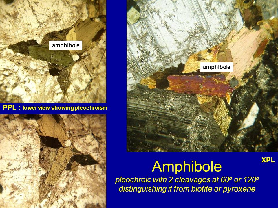 amphibole amphibole. PPL : lower view showing pleochroism.