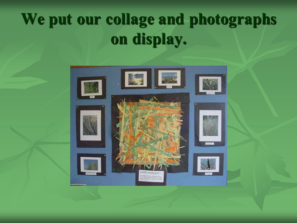 We put our collage and photographs on display.