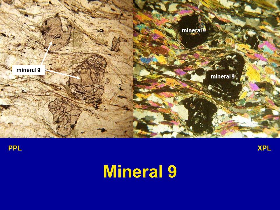 mineral 9 mineral 9 mineral 9 PPL XPL Mineral 9