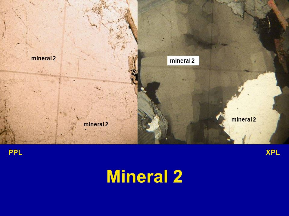 mineral 2 mineral 2 mineral 2 mineral 2 PPL XPL Mineral 2