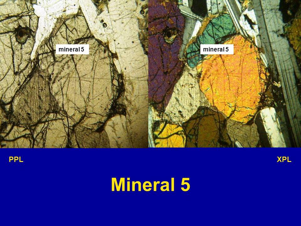 mineral 5 mineral 5 PPL XPL Mineral 5