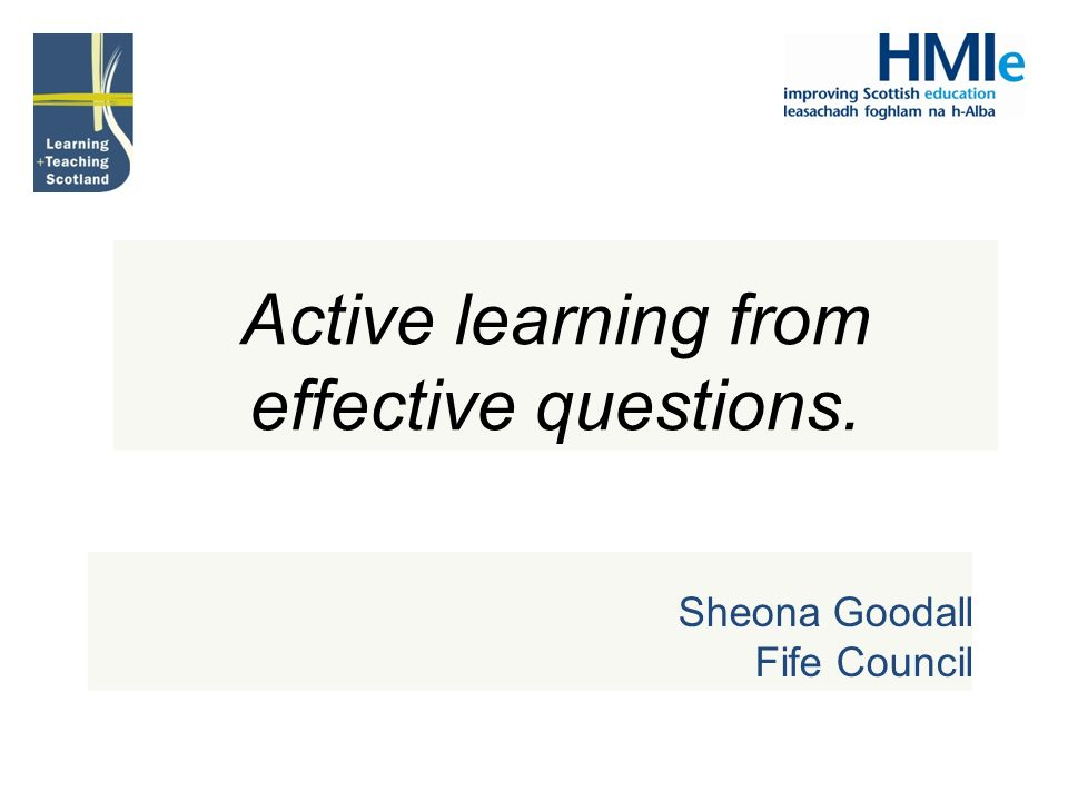 Active learning from effective questions.