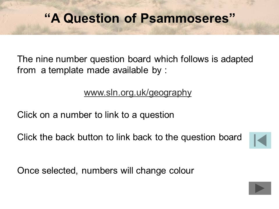 A Question of Psammoseres