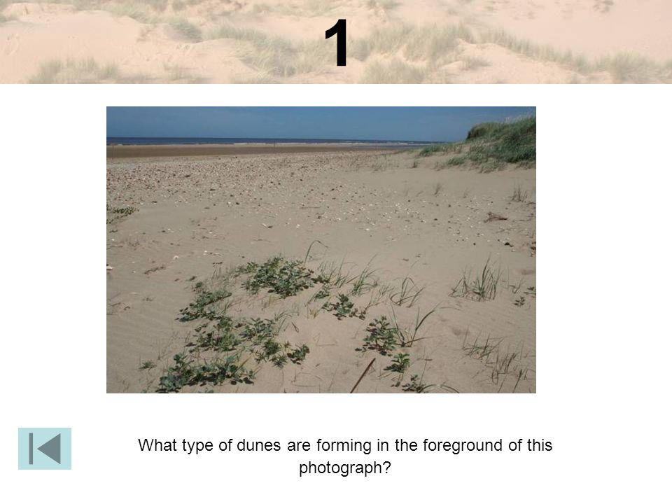What type of dunes are forming in the foreground of this photograph