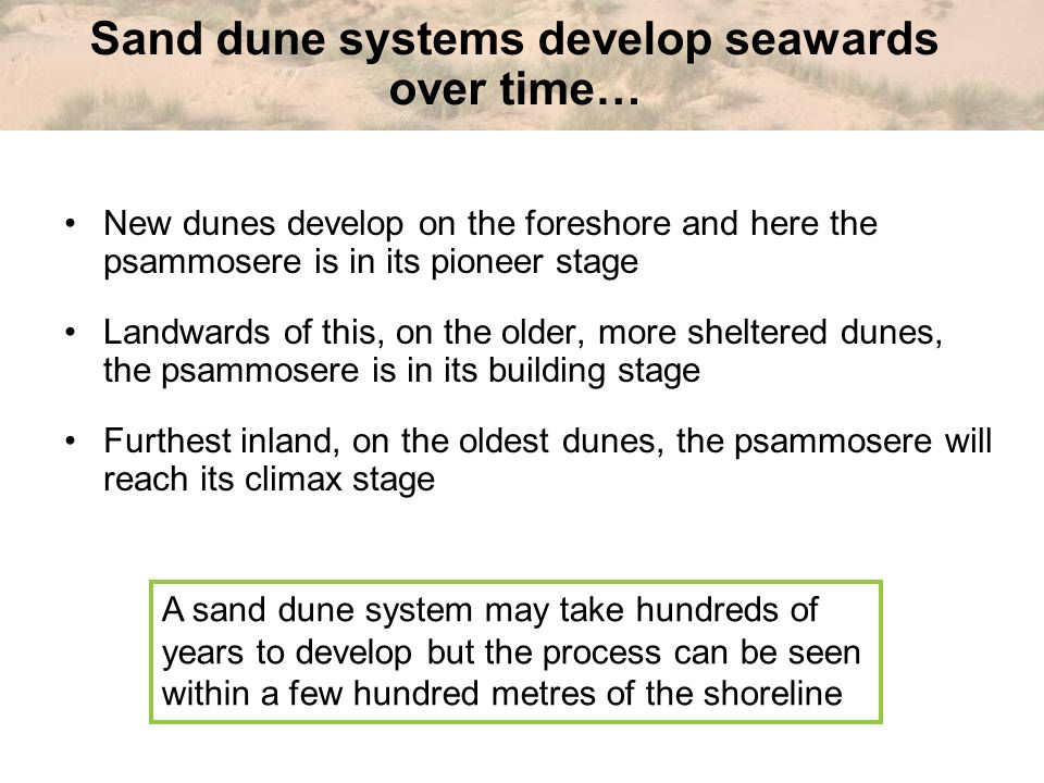 Sand dune systems develop seawards over time…