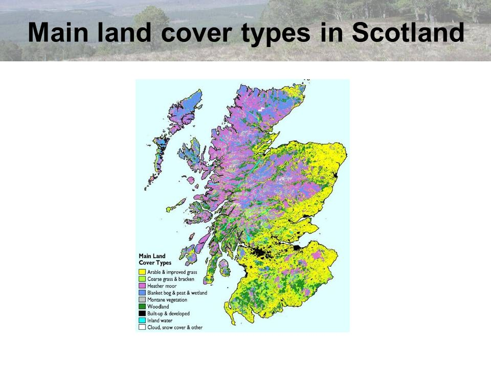 Main land cover types in Scotland