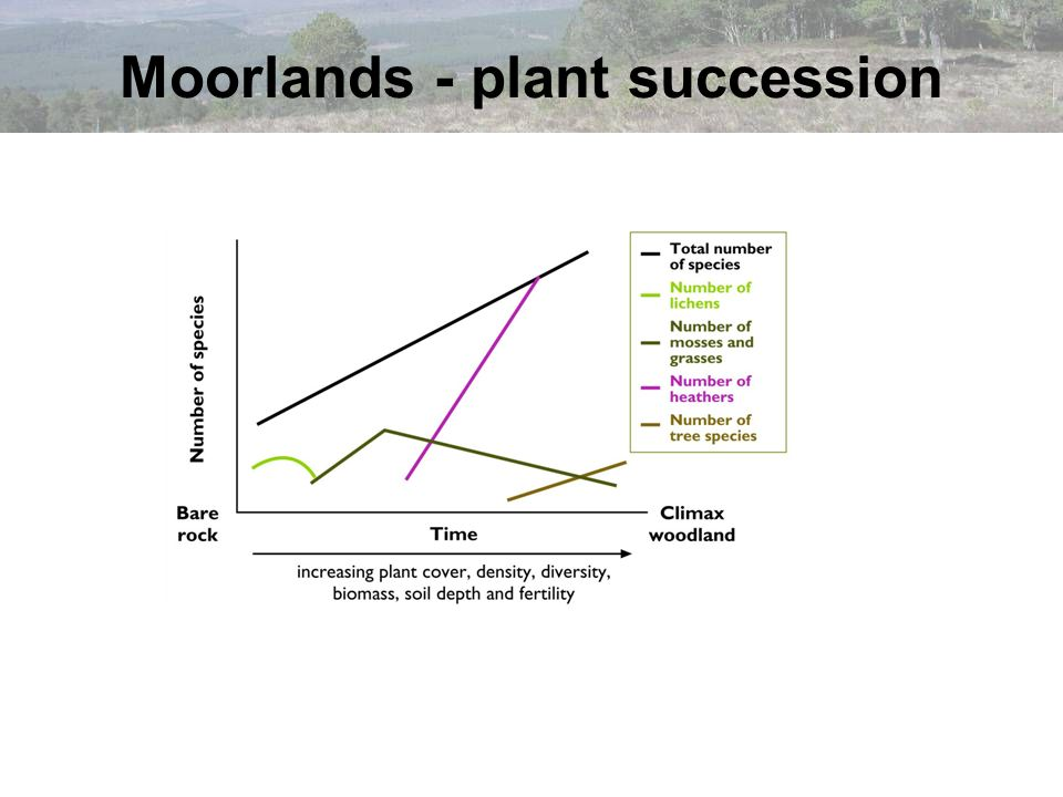 Moorlands - plant succession