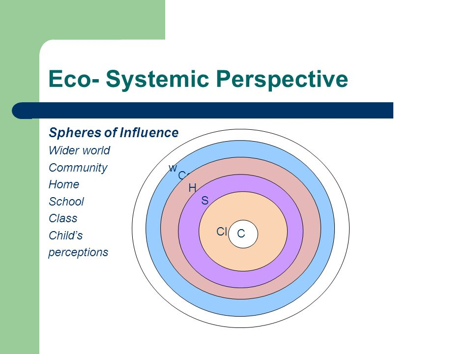 Eco- Systemic Perspective