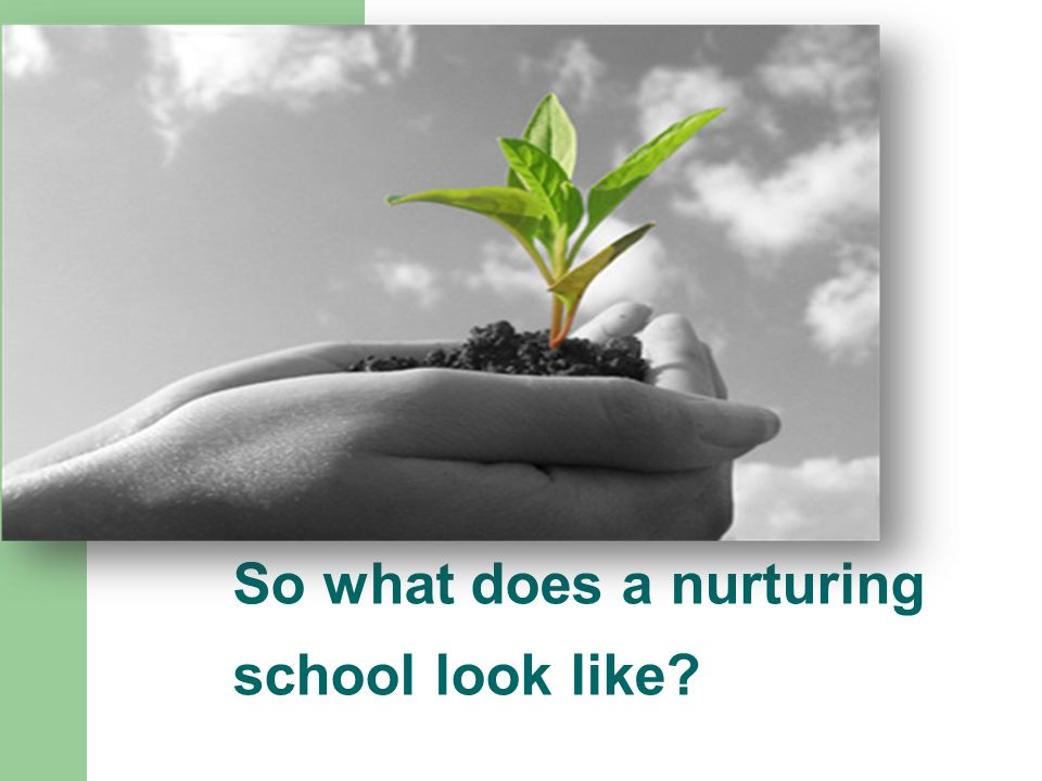 So what does a nurturing school look like