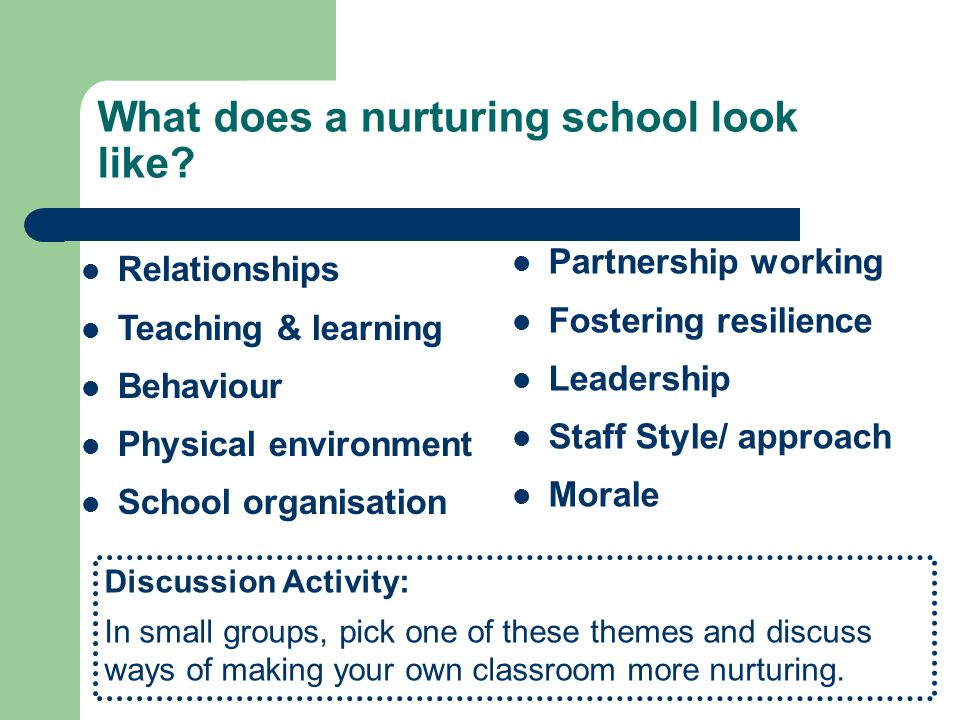 What does a nurturing school look like