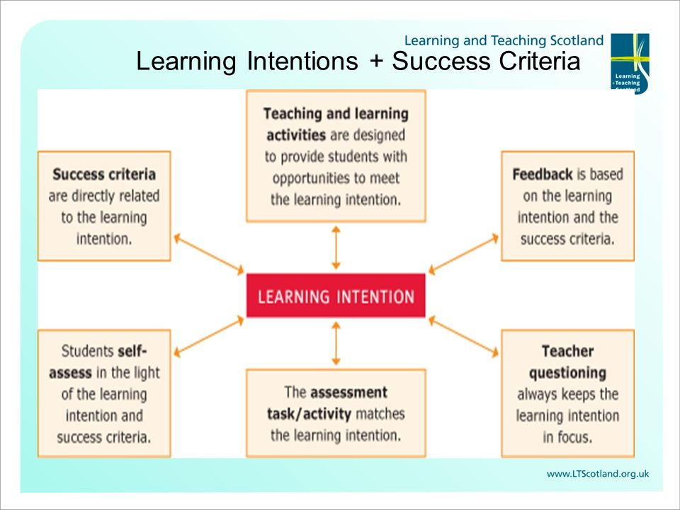Learning Intentions + Success Criteria