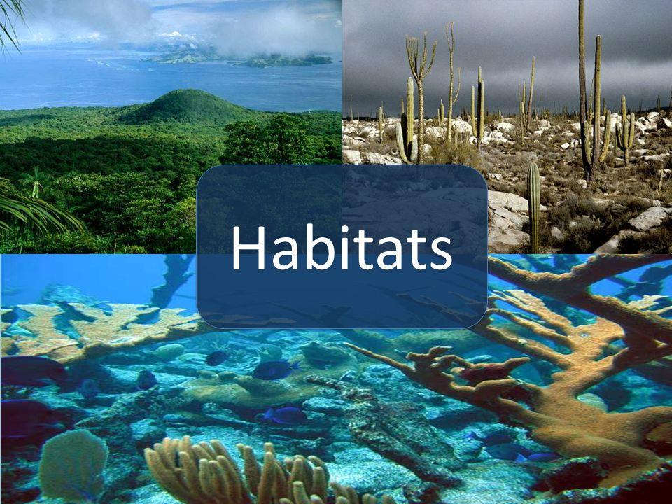 Image result for habitats