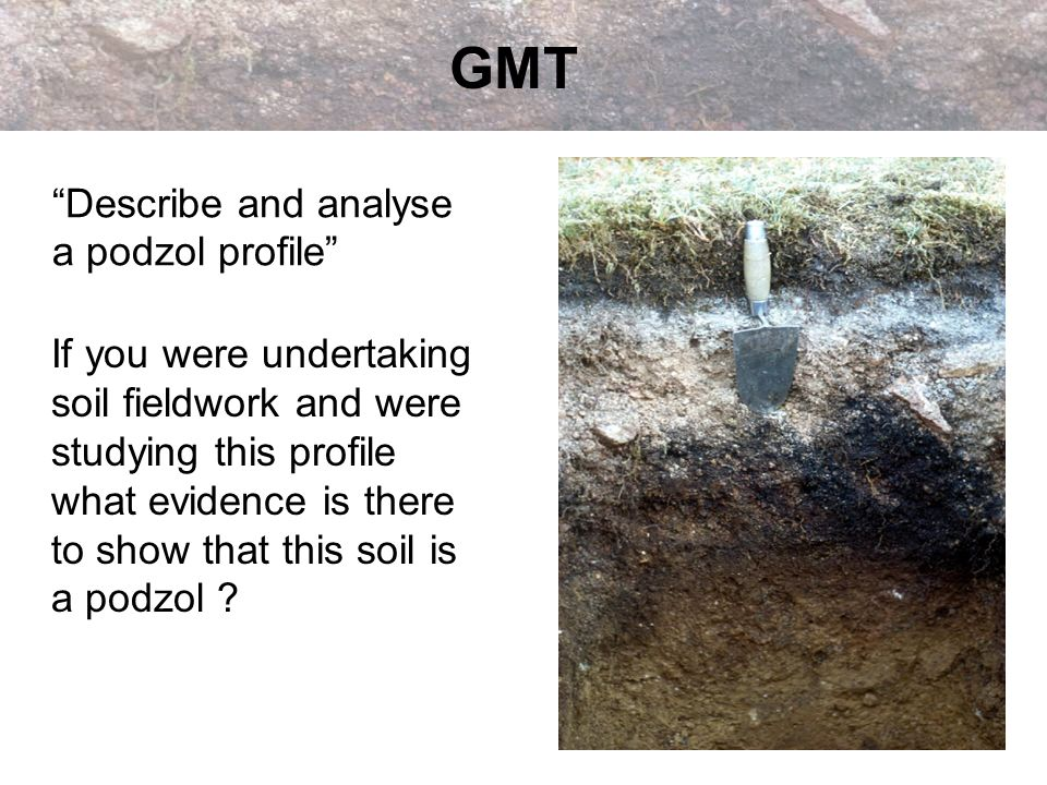 GMT Describe and analyse a podzol profile