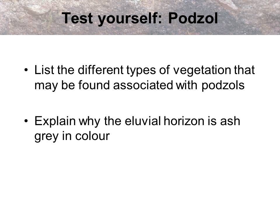 Test yourself: Podzol • List the different types of vegetation that may be found associated with podzols.
